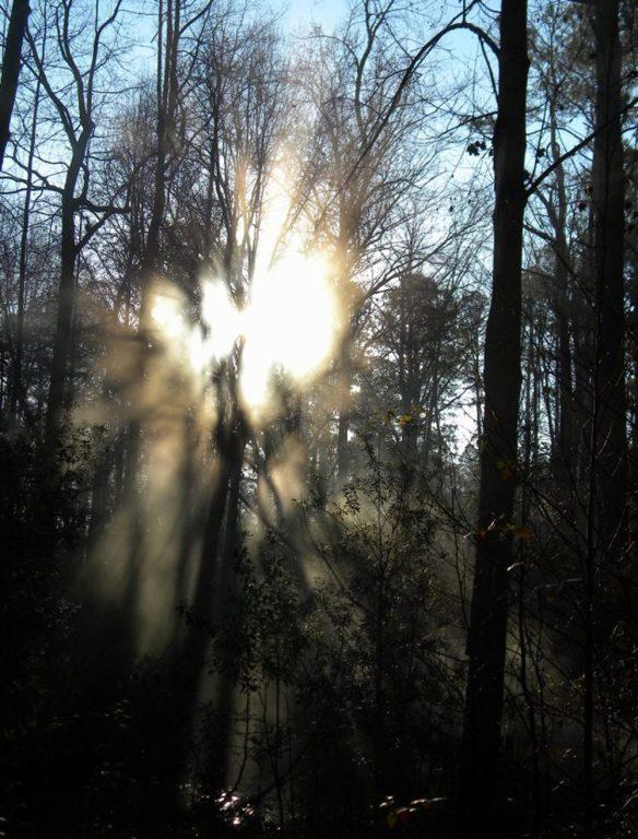 cropped-mcs68-angel-guidance-21.jpg