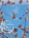 MCS47 Heaven Sent (2)
