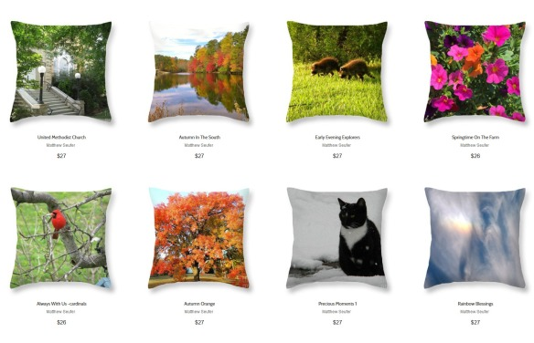 Screenshot_2019-11-25 Matthew Seufer Throw Pillows