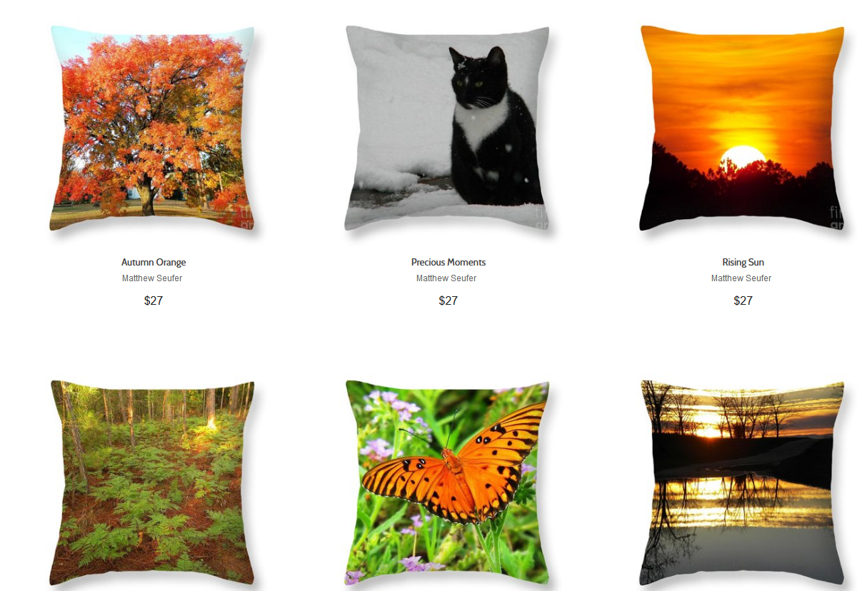 Screenshot_2020-01-25 Matthew Seufer - Throw Pillows for Salethrow pillows 1