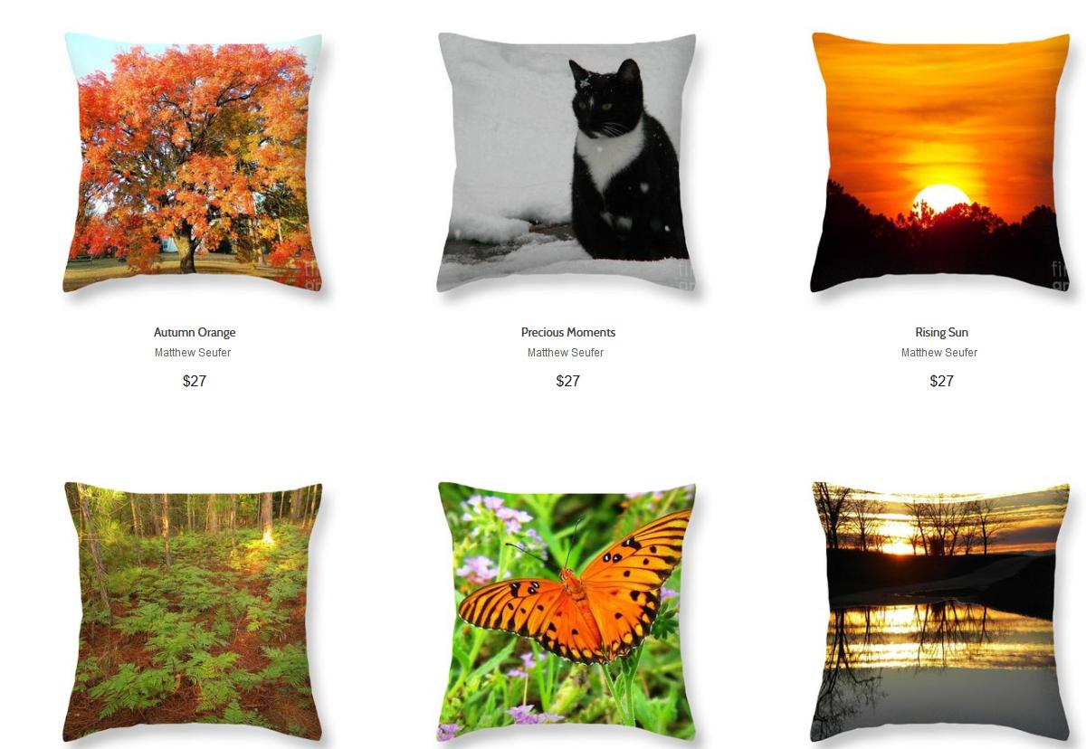 Screenshot_2020-01-25 Matthew Seufer - Throw Pillows for Salethrow pillows 1